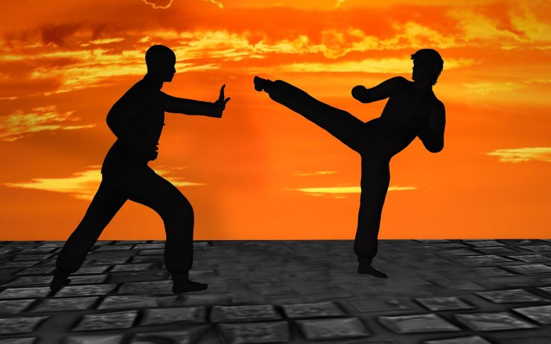 Exploring the Link Between Martial Arts and Medicine